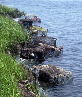 Abandoned crab pots near Ocracoke Isl NC