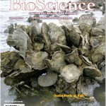 Bioscience cover 2_11