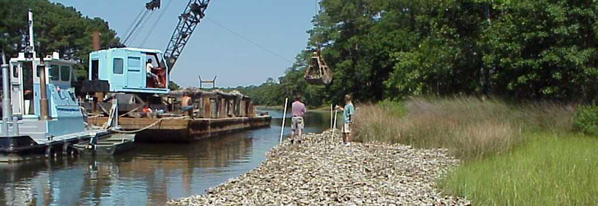 Reef construction on Long Creek