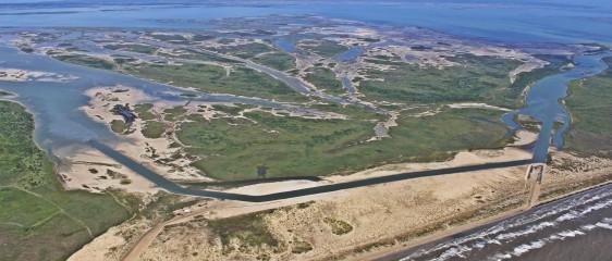 Galveston Restoration