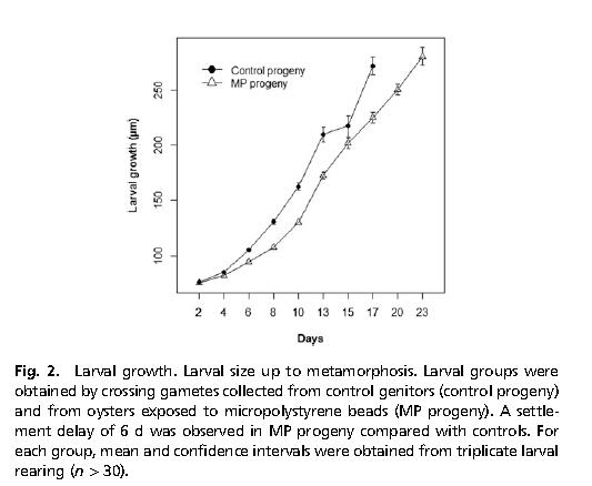 Sussarellu et al. Fig 2. PNAS 16