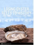 Losing oyster reefs